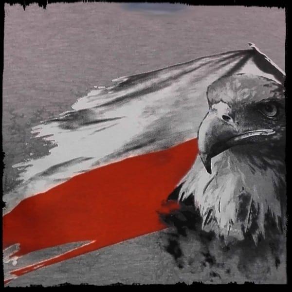 koszulka patriotyczna, męska - flaga, szara j. detal