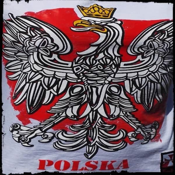 koszulka patriotyczna, męska - godło, biała detal