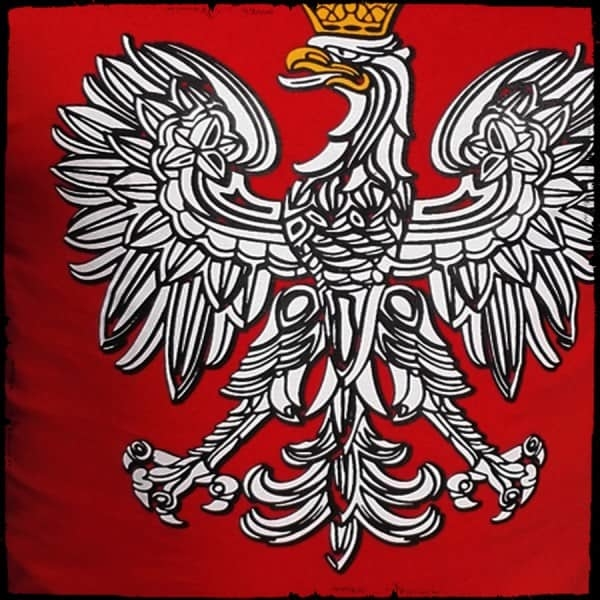 koszulka patriotyczna, męska - godło, czerwona detal